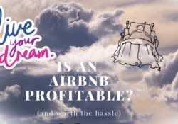 Is an AirBnB profitable?