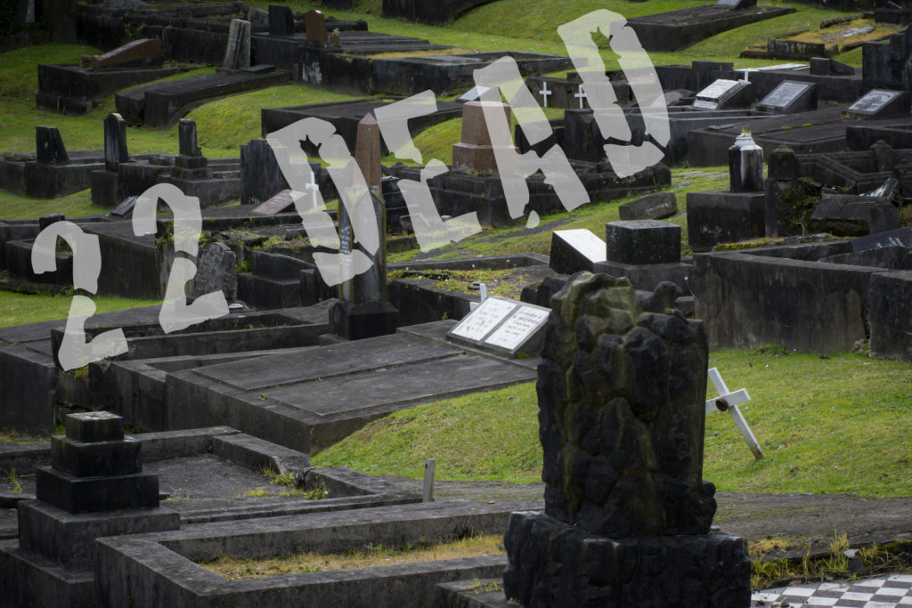 """A New Zealand cemetry with the words """"22 dead"""" in large superimposed over the image"""